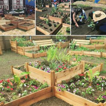 pictures-of-the-garden